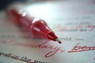 Every Writer Needs an Editor, Every Translator Needs a Checker