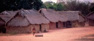 Canela Pole & Palm Thatch Houses on Firm Red Clay
