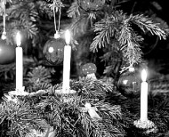 candles on tree